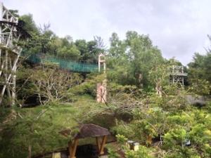 Taman Awam Miri, Sarawak.